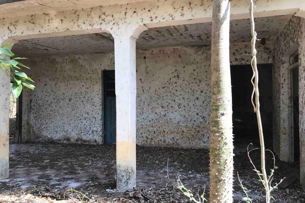 Foto de rancho en venta en  , teya, teya, yucatán, 8328769 No. 09
