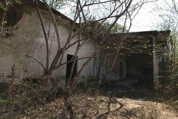 Foto de rancho en venta en  , teya, teya, yucatán, 8328769 No. 17