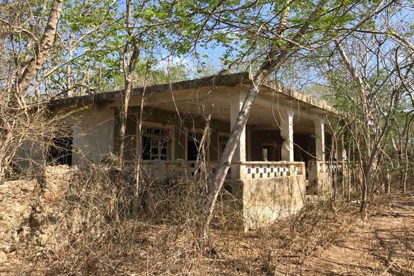 Foto de rancho en venta en  , teya, teya, yucatán, 8328769 No. 22