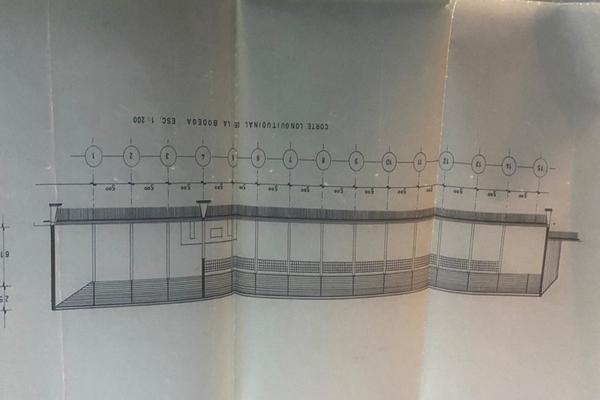 Foto de bodega en renta en  , teziutlán centro, teziutlán, puebla, 18816585 No. 11