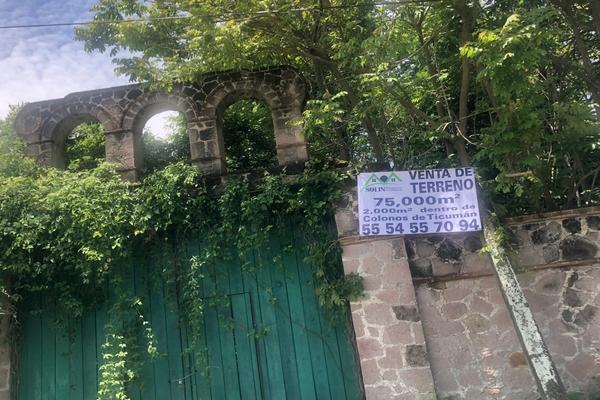 Foto de terreno habitacional en venta en  , pedregal, tlaltizapán de zapata, morelos, 7495938 No. 14