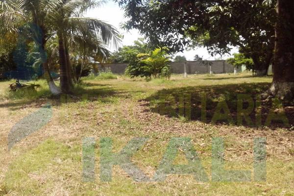Foto de terreno habitacional en renta en  , tierra blanca, tuxpan, veracruz de ignacio de la llave, 8295978 No. 03