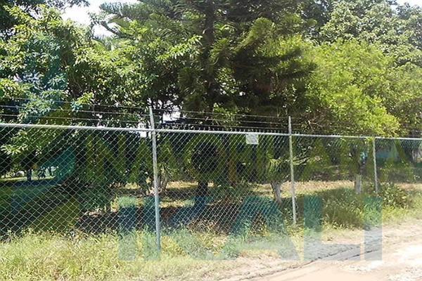Foto de terreno habitacional en renta en  , tierra blanca, tuxpan, veracruz de ignacio de la llave, 8295978 No. 06
