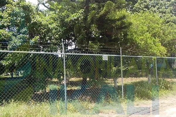 Foto de terreno habitacional en renta en  , tierra blanca, tuxpan, veracruz de ignacio de la llave, 8295978 No. 07