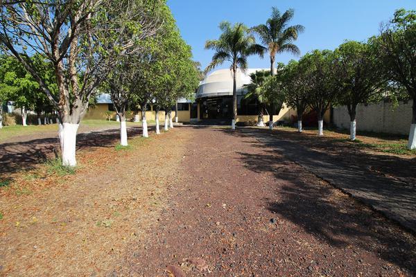 Foto de edificio en venta en  , tinijaro, morelia, michoacán de ocampo, 13012310 No. 01