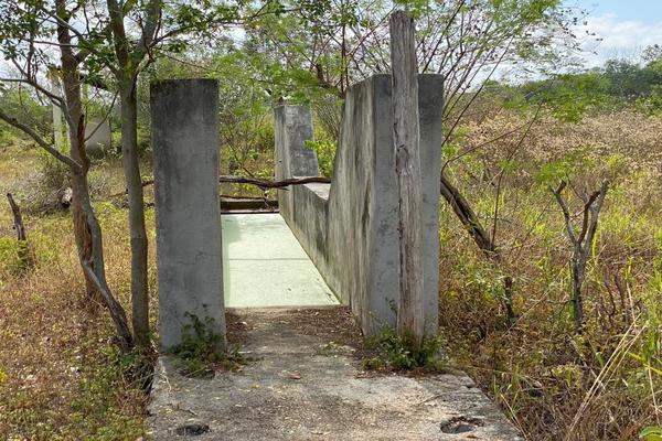 Foto de rancho en venta en  , tixcacaltuyub, yaxcabá, yucatán, 7177907 No. 09