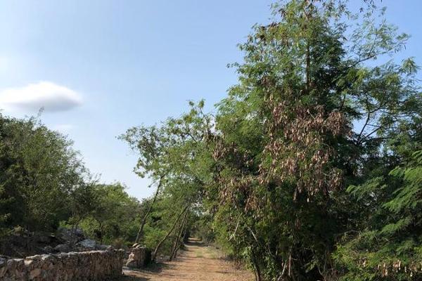Foto de terreno habitacional en venta en  , tixkuncheil, baca, yucatán, 0 No. 02