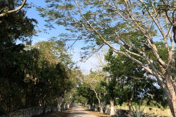 Foto de terreno habitacional en venta en  , tixkuncheil, baca, yucatán, 0 No. 03