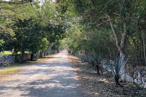 Foto de terreno habitacional en venta en  , tixkuncheil, baca, yucatán, 0 No. 04