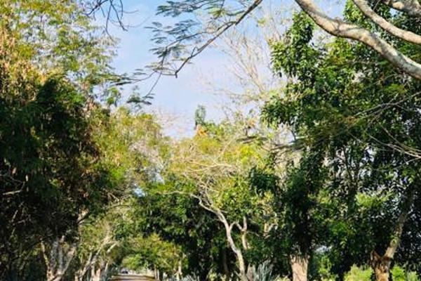 Foto de terreno habitacional en venta en  , tixkuncheil, baca, yucatán, 0 No. 06