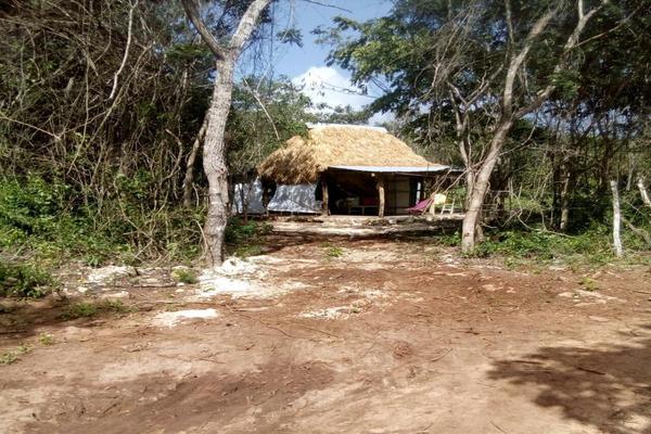 Foto de rancho en venta en  , tizimin centro, tizimín, yucatán, 14028331 No. 03