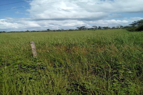 Foto de rancho en venta en  , tizimin centro, tizimín, yucatán, 14028331 No. 06