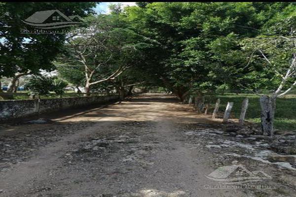 Foto de terreno habitacional en venta en  , tizimin centro, tizimín, yucatán, 0 No. 13
