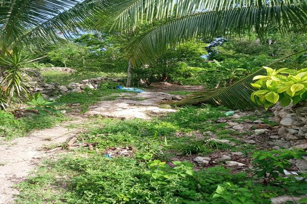 Foto de terreno habitacional en venta en  , tizimin centro, tizimín, yucatán, 0 No. 09