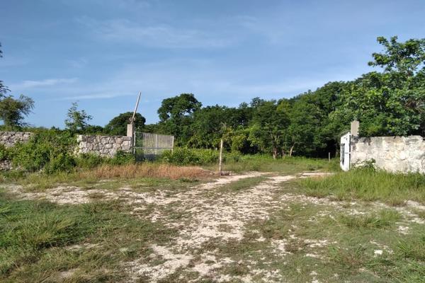 Foto de terreno habitacional en venta en  , tizimin centro, tizimín, yucatán, 0 No. 04