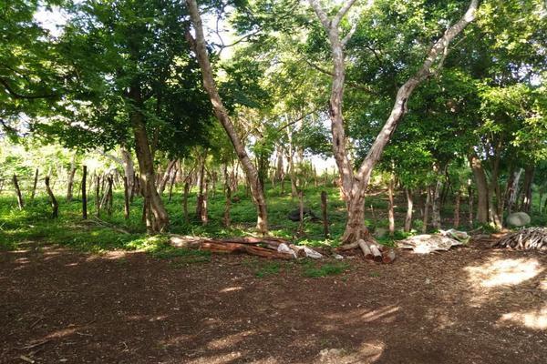 Foto de terreno habitacional en venta en  , tizimin centro, tizimín, yucatán, 0 No. 05