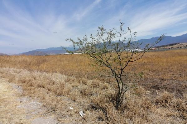 Foto de terreno habitacional en venta en  , tlacolula de matamoros centro, tlacolula de matamoros, oaxaca, 6168038 No. 06