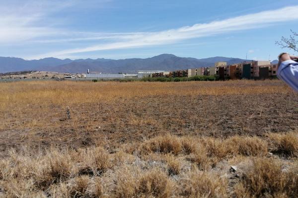 Foto de terreno habitacional en venta en  , tlacolula de matamoros centro, tlacolula de matamoros, oaxaca, 6168038 No. 08