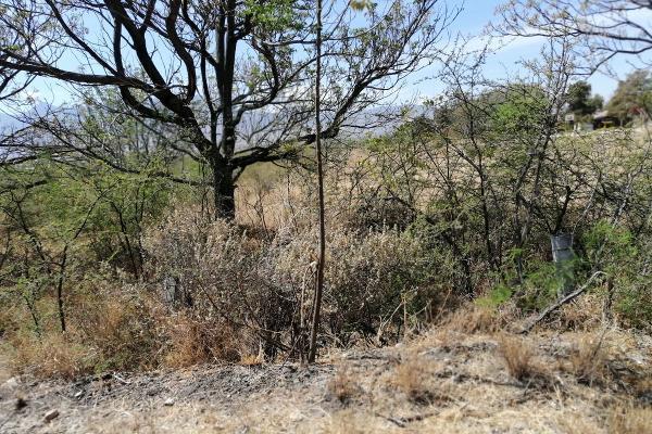 Foto de terreno habitacional en venta en  , tlacolula de matamoros centro, tlacolula de matamoros, oaxaca, 6168038 No. 13
