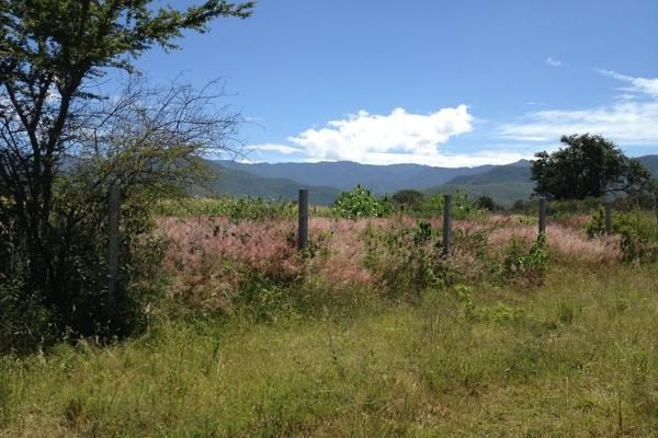 Foto de terreno habitacional en venta en  , tlalixtac de cabrera, tlalixtac de cabrera, oaxaca, 2735657 No. 02