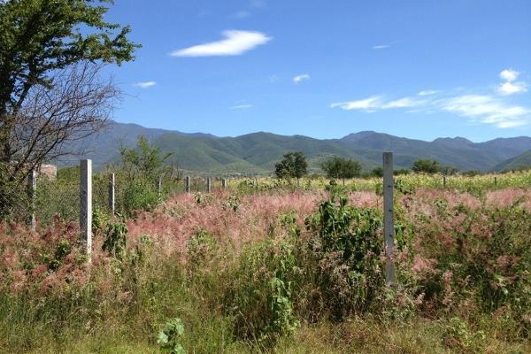 Foto de terreno habitacional en venta en  , tlalixtac de cabrera, tlalixtac de cabrera, oaxaca, 2735657 No. 04