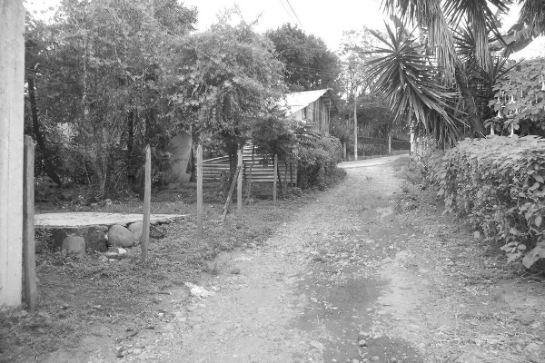 Foto de terreno habitacional en venta en  , tlalnelhuayocan, tlalnelhuayocan, veracruz de ignacio de la llave, 2635434 No. 02