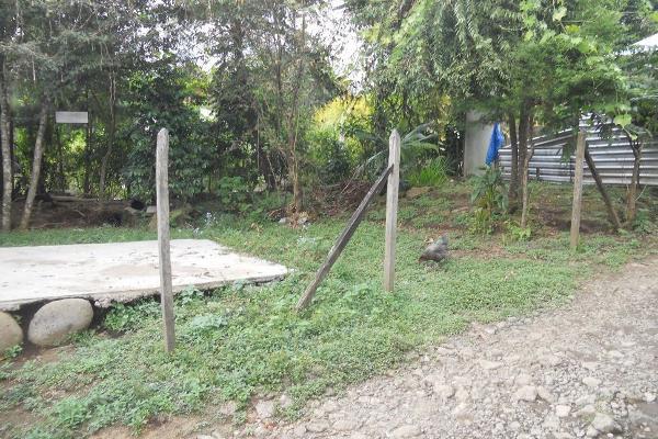 Foto de terreno habitacional en venta en  , tlalnelhuayocan, tlalnelhuayocan, veracruz de ignacio de la llave, 2635434 No. 04
