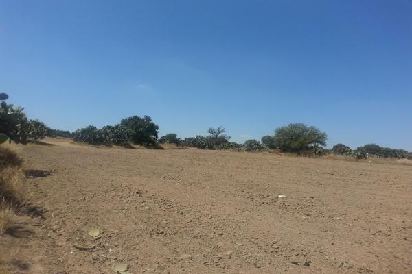 Foto de terreno habitacional en venta en  , tlanalapa centro, tlanalapa, hidalgo, 7488681 No. 03