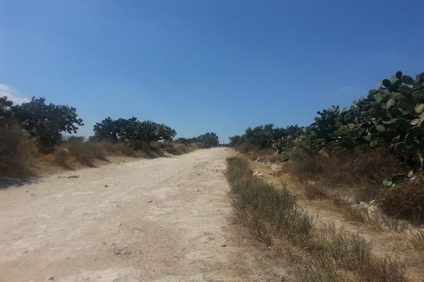 Foto de terreno habitacional en venta en  , tlanalapa centro, tlanalapa, hidalgo, 7488681 No. 07