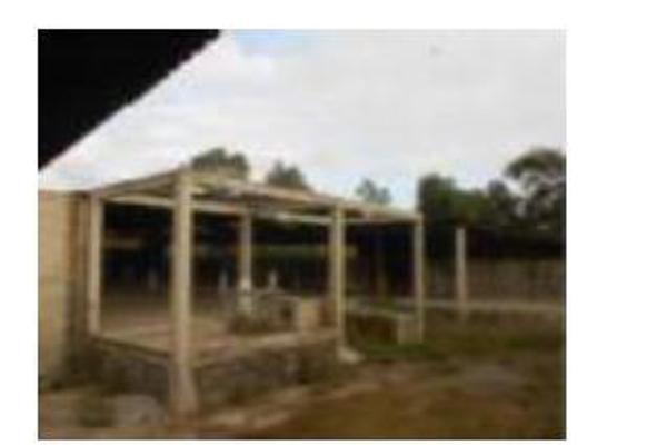 Foto de nave industrial en venta en  , tlaxinacalpan, tepeji del río de ocampo, hidalgo, 11426551 No. 11