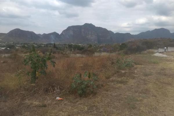 Foto de terreno habitacional en venta en  , tlayacapan, tlayacapan, morelos, 7658286 No. 06