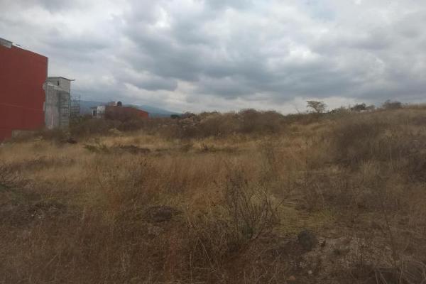 Foto de terreno habitacional en venta en  , tlayacapan, tlayacapan, morelos, 8118478 No. 02