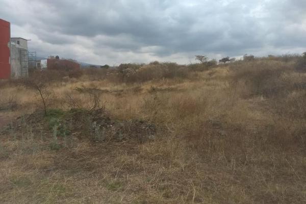 Foto de terreno habitacional en venta en  , tlayacapan, tlayacapan, morelos, 8118478 No. 04