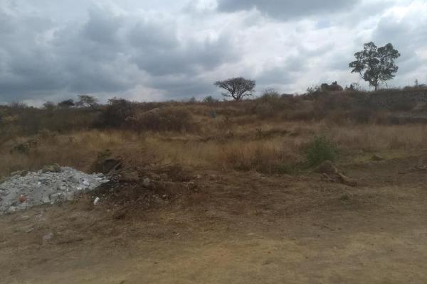 Foto de terreno habitacional en venta en  , tlayacapan, tlayacapan, morelos, 8118478 No. 05