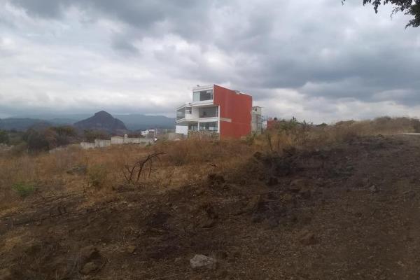 Foto de terreno habitacional en venta en  , tlayacapan, tlayacapan, morelos, 8118478 No. 06