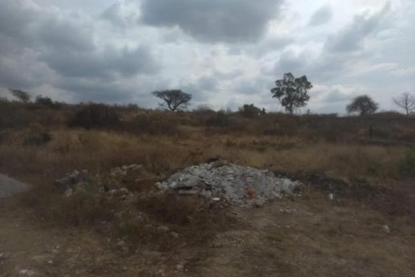 Foto de terreno habitacional en venta en  , tlayacapan, tlayacapan, morelos, 8118478 No. 07
