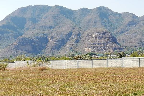 Foto de terreno habitacional en venta en tlecuilco s/n , tlecuilco, ocuilan, méxico, 6169591 No. 05