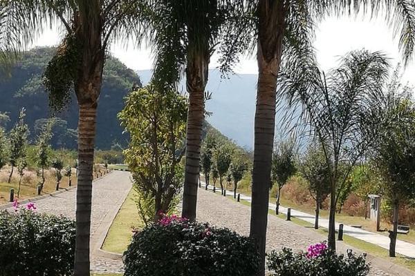 Foto de terreno habitacional en venta en tlecuilco s/n , tlecuilco, ocuilan, méxico, 6169591 No. 09