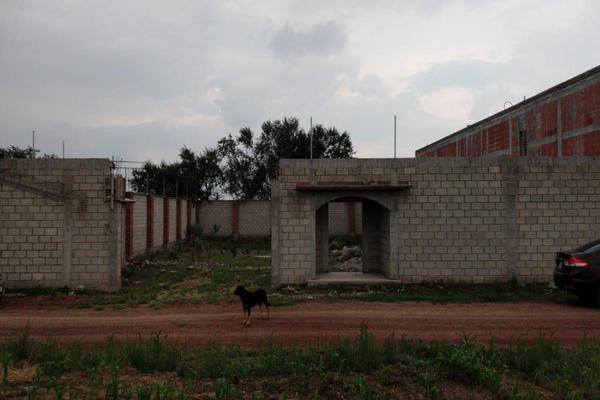 Foto de terreno habitacional en venta en  , toluca, toluca, méxico, 19243039 No. 04