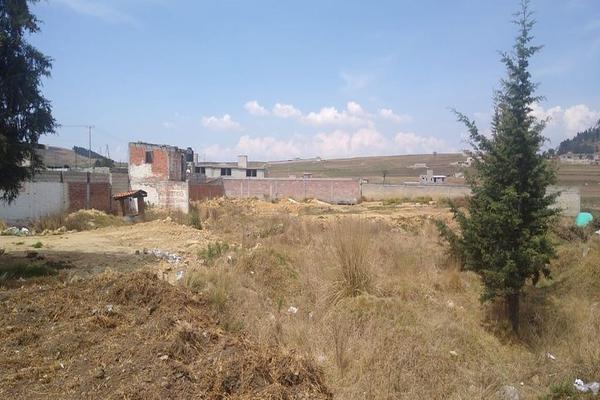 Foto de terreno habitacional en venta en toluca-morelia, 51355 san francisco tlalcilalcalpan, méx. , san luis mextepec, zinacantepec, méxico, 0 No. 02