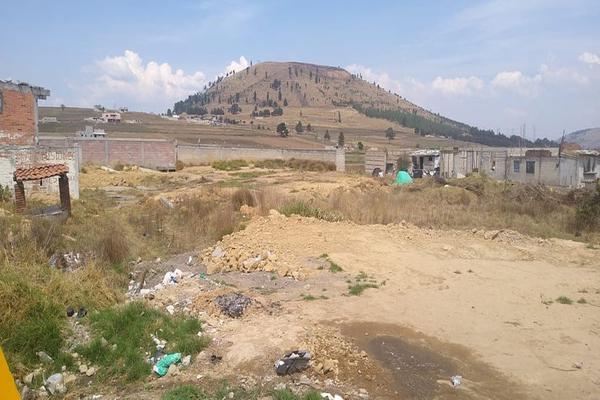 Foto de terreno habitacional en venta en toluca-morelia, 51355 san francisco tlalcilalcalpan, méx. , san luis mextepec, zinacantepec, méxico, 0 No. 09
