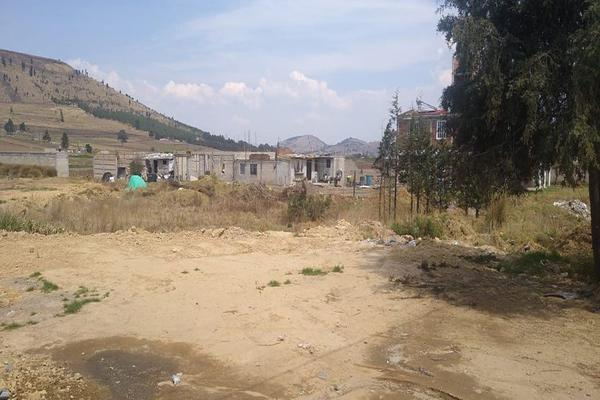 Foto de terreno habitacional en venta en toluca-morelia, 51355 san francisco tlalcilalcalpan, méx. , san luis mextepec, zinacantepec, méxico, 0 No. 10