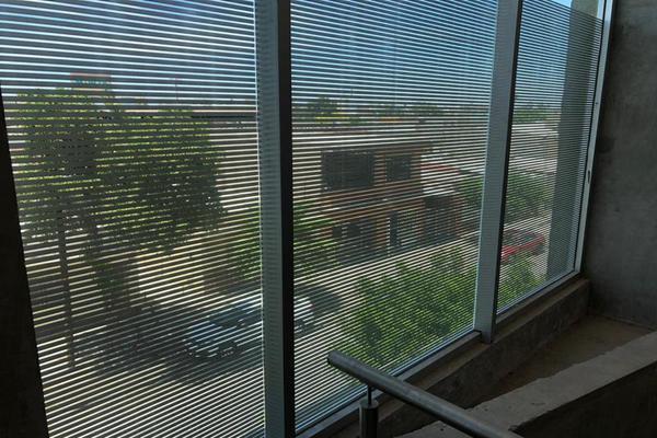 Foto de departamento en renta en  , torreón centro, torreón, coahuila de zaragoza, 0 No. 06