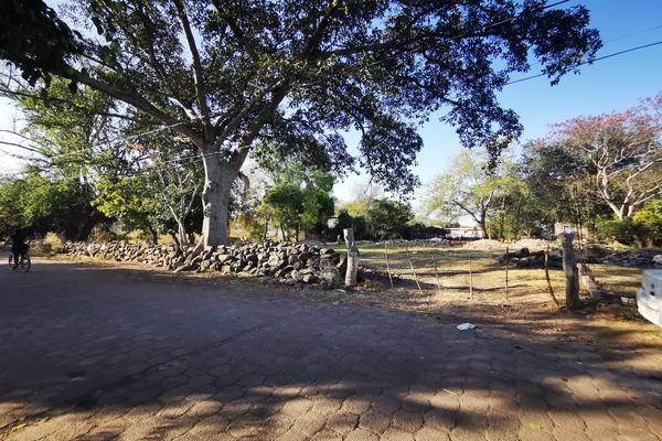 Foto de terreno habitacional en venta en  , totolán (santuario de ntra. sra. de los remedios), jiquilpan, michoacán de ocampo, 19971324 No. 01