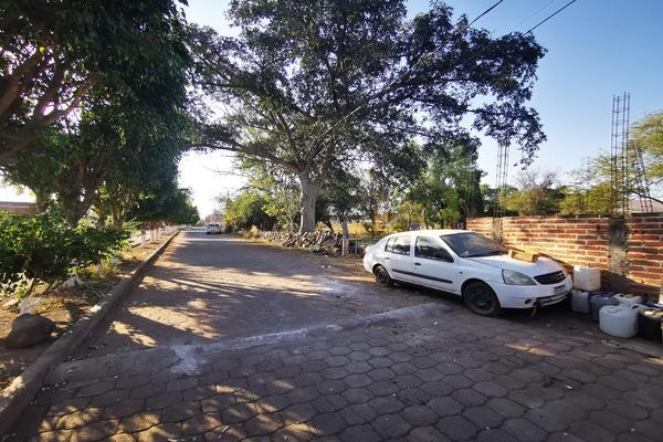 Foto de terreno habitacional en venta en  , totolán (santuario de ntra. sra. de los remedios), jiquilpan, michoacán de ocampo, 19971324 No. 02