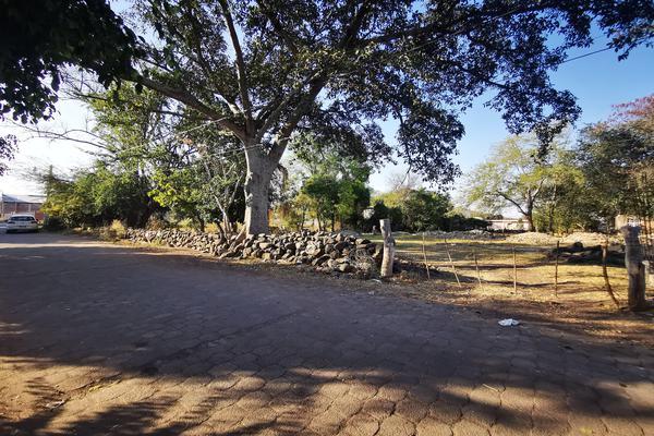 Foto de terreno habitacional en venta en  , totolán (santuario de ntra. sra. de los remedios), jiquilpan, michoacán de ocampo, 19971324 No. 05