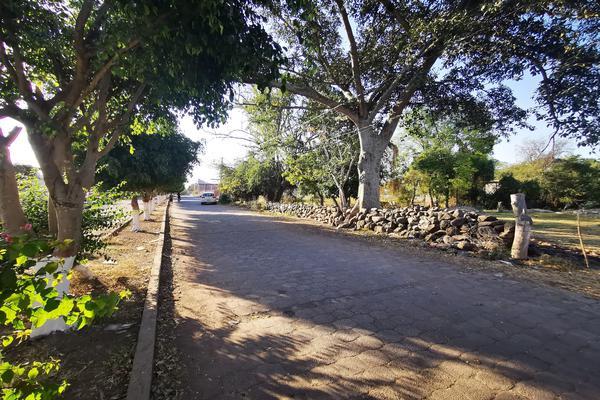 Foto de terreno habitacional en venta en  , totolán (santuario de ntra. sra. de los remedios), jiquilpan, michoacán de ocampo, 19971324 No. 06