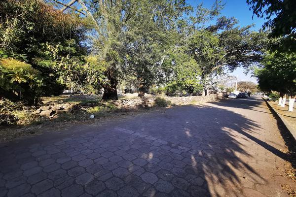 Foto de terreno habitacional en venta en  , totolán (santuario de ntra. sra. de los remedios), jiquilpan, michoacán de ocampo, 19971324 No. 10