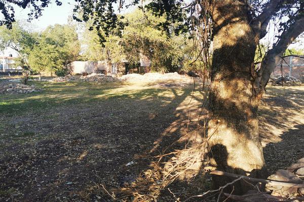Foto de terreno habitacional en venta en  , totolán (santuario de ntra. sra. de los remedios), jiquilpan, michoacán de ocampo, 19971324 No. 11