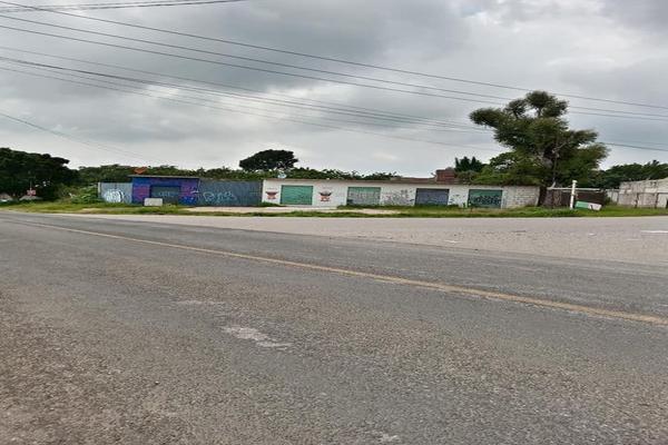 Foto de terreno habitacional en venta en totolapan 1, san marcos, totolapan, morelos, 0 No. 04